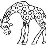 desenhos de animais para colorir foto 2 150x150 - Desenhos de animais para colorir