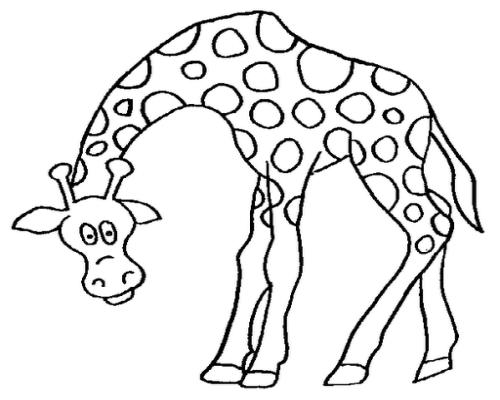 Desenhos De Animais Para Colorir Colorir: Desenhos De Animais Para Colorir