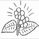 Desenho de flor para colorir 04 150x150 - Desenho de  flor para colorir, diversão e aprendizado para crianças.