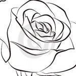 Desenho de flor para colorir 09 150x150 - Desenho de  flor para colorir, diversão e aprendizado para crianças.