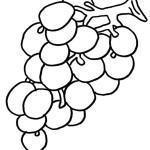 Desenho de fruta saudável para pintar 150x150 - Desenho de fruta para pintar - várias fotos