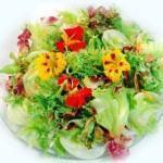salada de verão 2