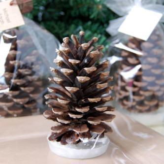 melhores decoração de natal com pinhas