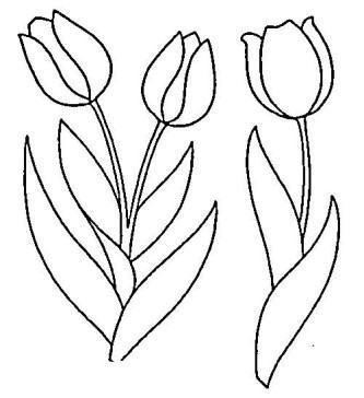 belas tulipas para pintar
