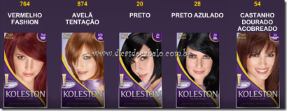 tabela de cores cabelos koleston cores escuras 410x159 - Tabela de cores cabelos Koleston para coloração