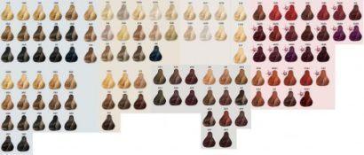 tabela de cores cabelos koleston tons de loiro castanho e ruivo 410x175 - Tabela de cores cabelos Koleston para coloração